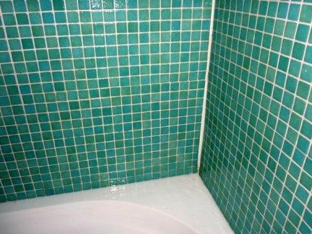 Bathroom Tile and Grout after being cleaned by Edinburgh Tile Doctor