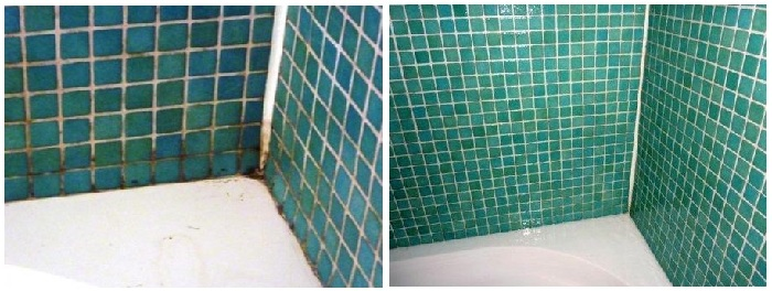 Bathroom shower in Edinburgh cleaned of Mould and dirt