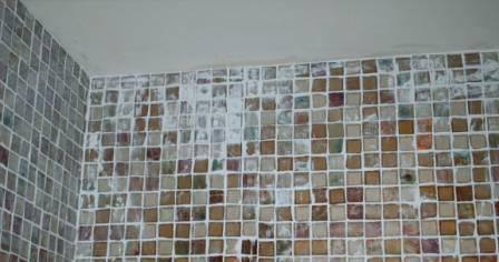 Picture shows Grout left to dry on the tile.